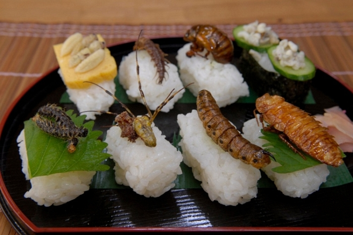 Insects on food! Photo@ blogspot.com