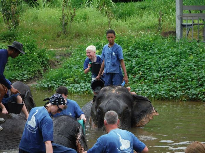 """I've washed and scrubbed my elephant. What do I do now mummy?!"""