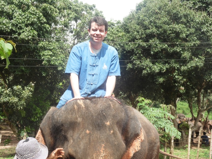 Hold the elephant gently behind the ears: It doesn't hurt them!