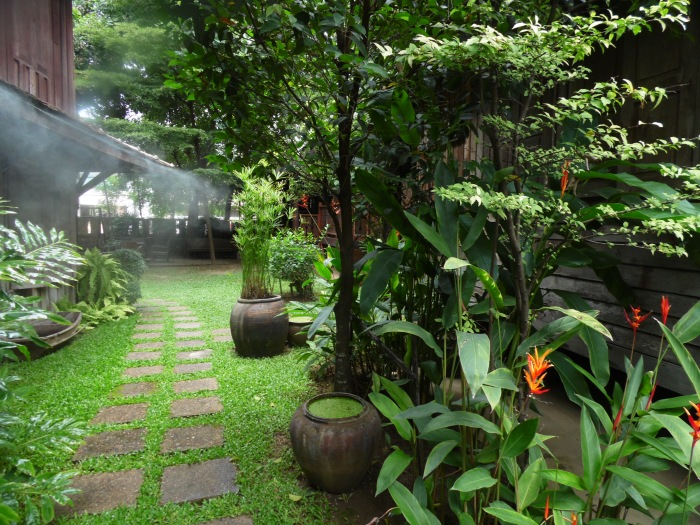 The lush greeness of Tanita House in Chiang Mai!