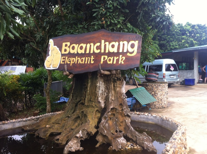 Baanchang Elephant Park. A place where the elephants can have a better life.