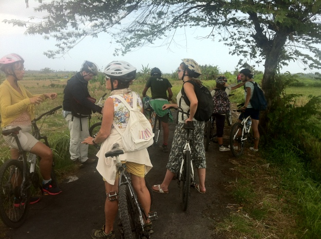 Our little band of cyclists in Bali.