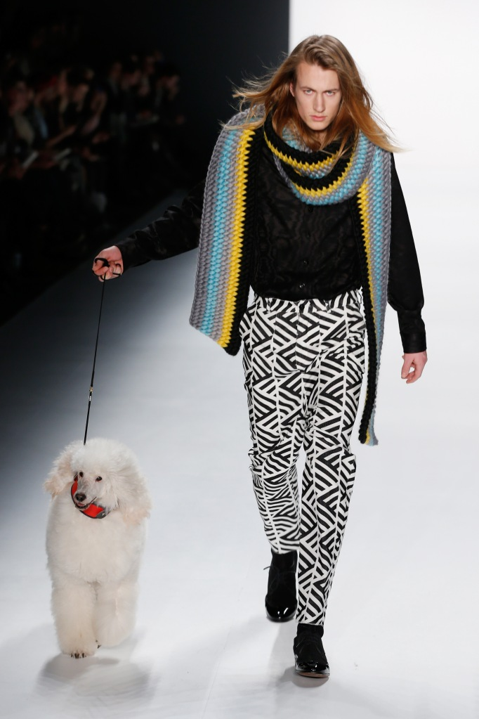 Poodles are soooo in!