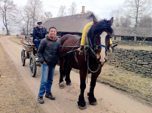 Literally one man and his horse, at the Estonian Open Air Museum!