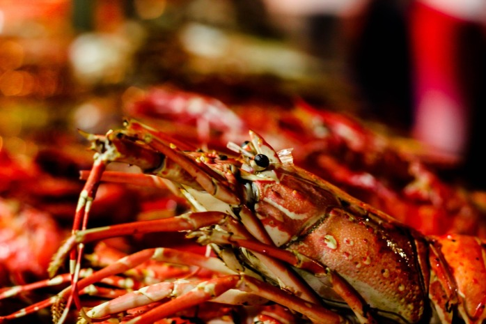 Delicious seafood & lobster!