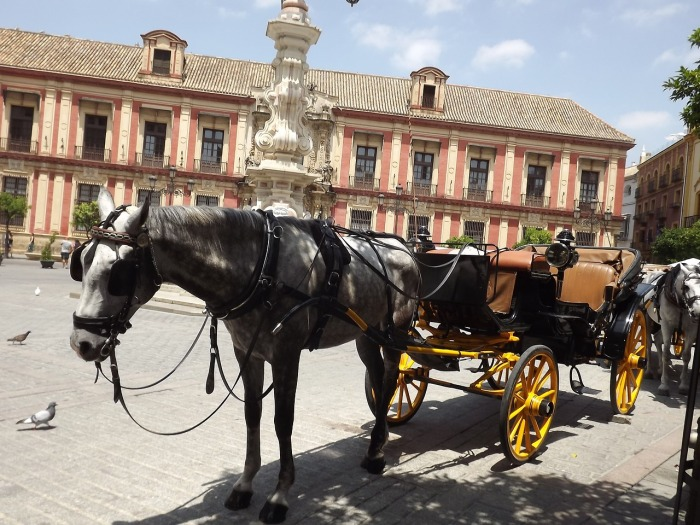 Hire a horse and carriage in Seville. Go on! You know you want to!