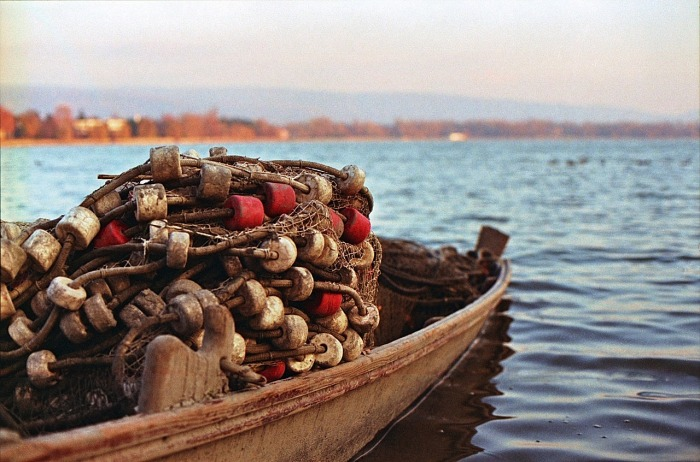 Portugal has been fishing and trading in seafood since the 15th century!