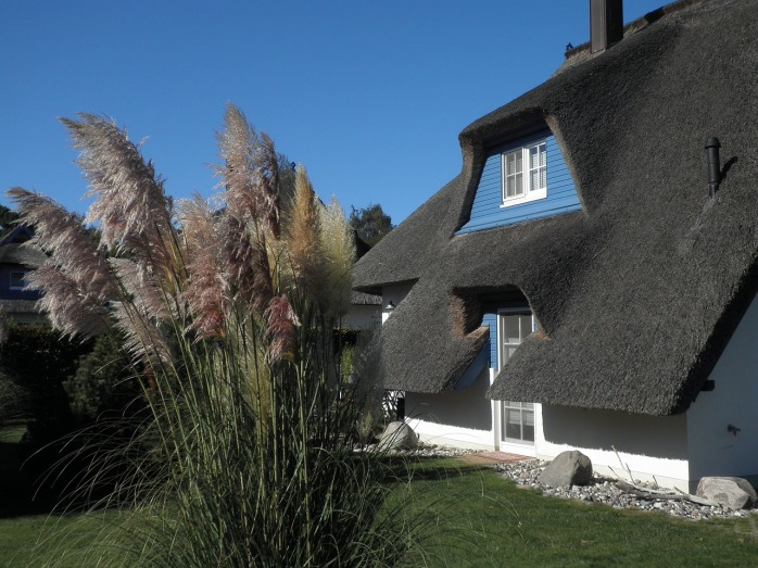 These beautiful thatch roofs remind me of England even though, they're actually from Usedom, a Baltic Sea island in Germany!