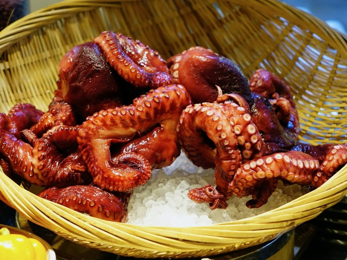 Octopus in Portugal!