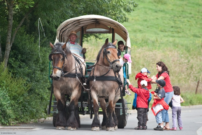 You can also go by horse! Luxembourg: A smart guide to the Grand Duchy of one of Europe's smallest countries!