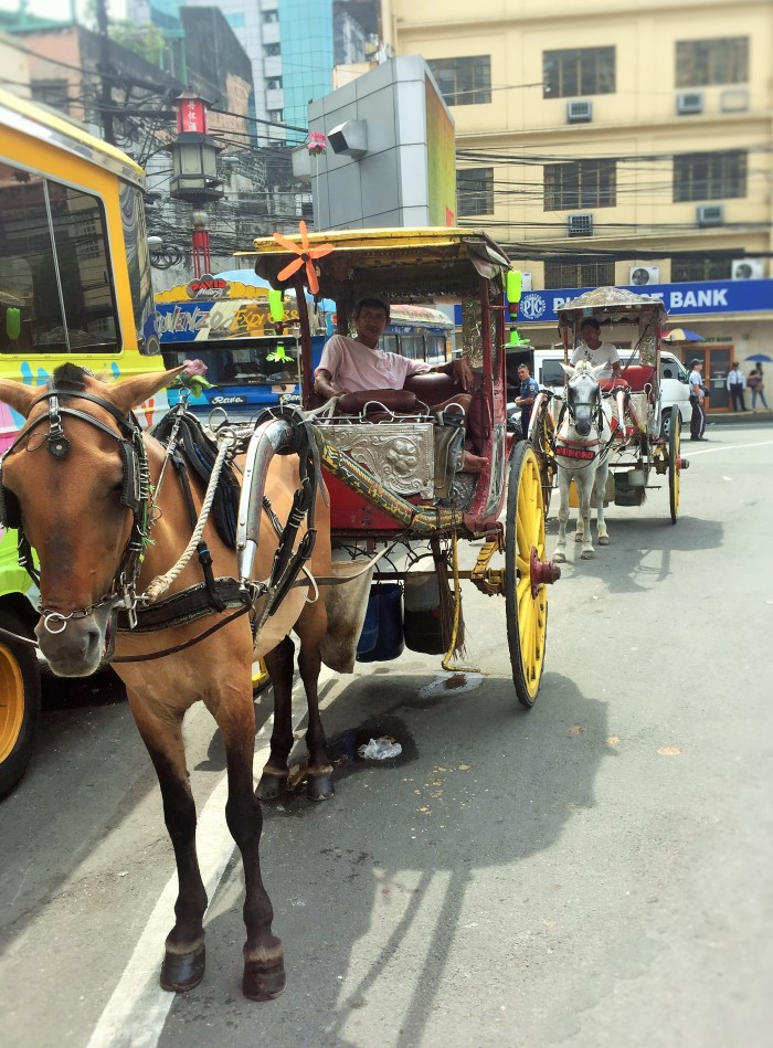 Just me and my horse in Manila!