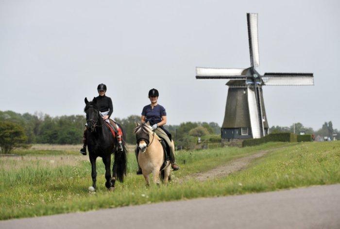 Walking, cycling, or horse-riding, is much appreciated in Zaandam! @Bart Homburg