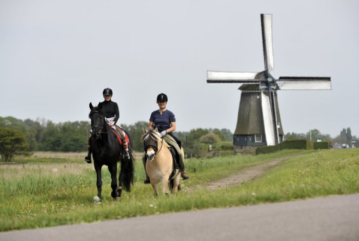 Walking, cycling, or horse-riding, is much appreciated in Zaandam! @Bart Homburg