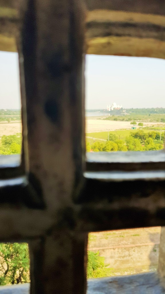 You can actually see the Taj Mahal quite well from the Mehtab Bagh Park