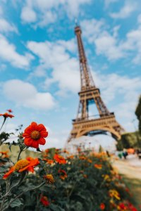Eiffel Tower; Eiffel; Tower; French monument; sightseeing; tourism; summer in France; summer; Paris; France; French; Europe; travel